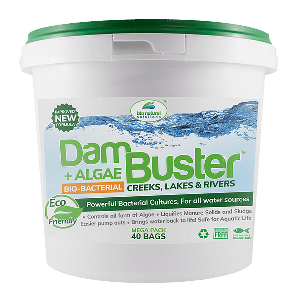 Dam Buster™ Creeks, Lakes & Rivers